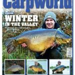 Carpworld March 2020